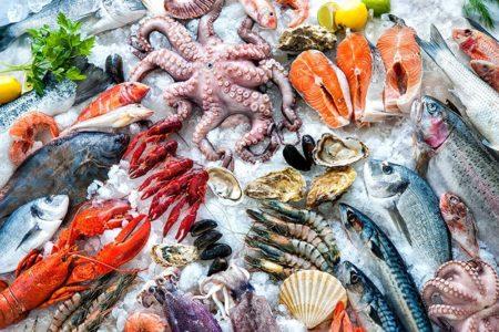 Польза морепродуктов для здоровья